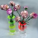 Vasi in plexiglass