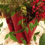 red plexiglas bowl